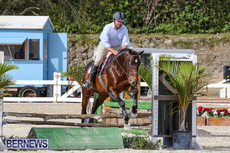 RES-Horse-Show-Bermuda-January-21-2017-64