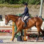 RES Horse Show Bermuda, January 21 2017-65