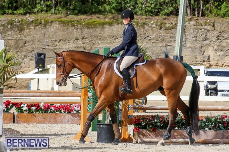 RES-Horse-Show-Bermuda-January-21-2017-65