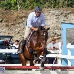 RES Horse Show Bermuda, January 21 2017-70
