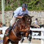 RES Horse Show Bermuda, January 21 2017-71