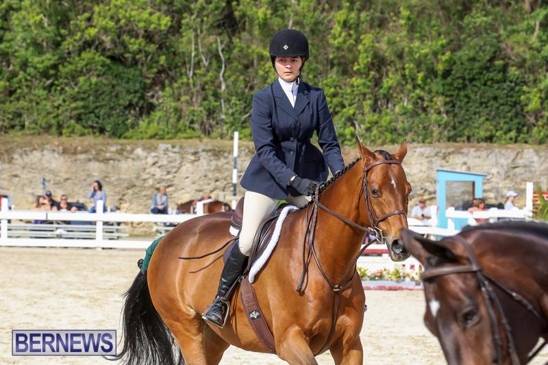 RES-Horse-Show-Bermuda-January-21-2017-72