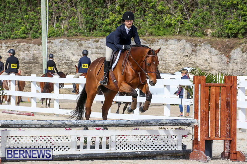 RES-Horse-Show-Bermuda-January-21-2017-78