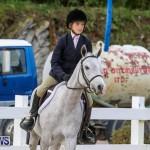 RES Horse Show Bermuda, January 21 2017-8