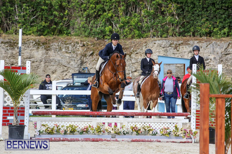 RES-Horse-Show-Bermuda-January-21-2017-80