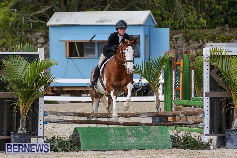 RES-Horse-Show-Bermuda-January-21-2017-82