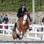RES Horse Show Bermuda, January 21 2017-87