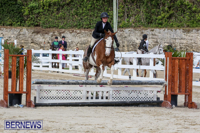 RES-Horse-Show-Bermuda-January-21-2017-88