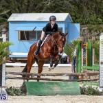 RES Horse Show Bermuda, January 21 2017-89