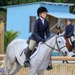 RES Horse Show Bermuda, January 21 2017-9
