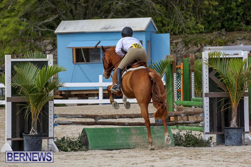 RES-Horse-Show-Bermuda-January-21-2017-92