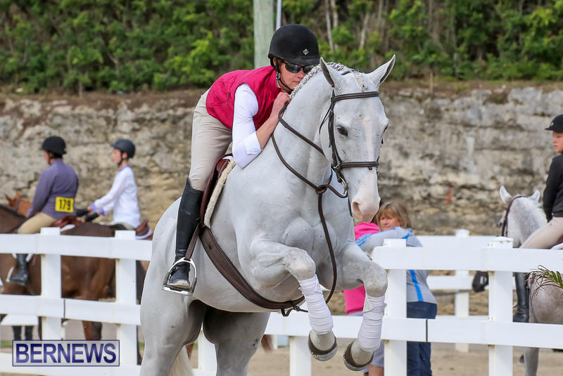 RES-Horse-Show-Bermuda-January-21-2017-93