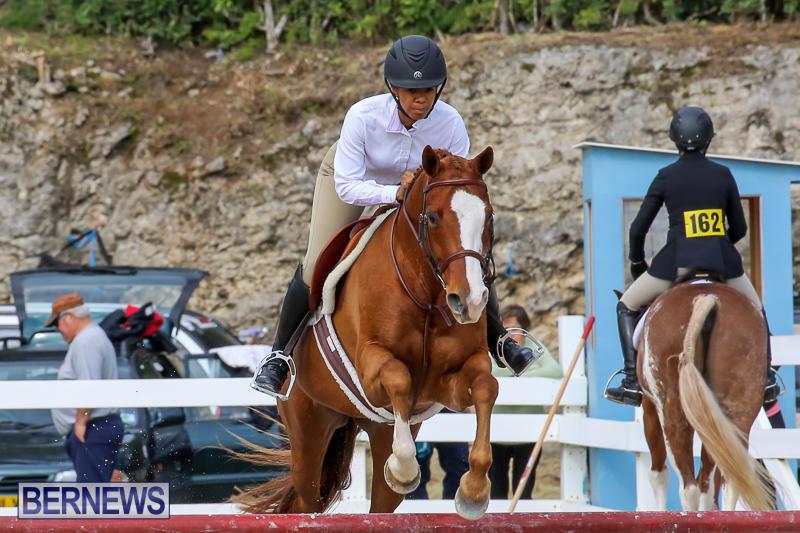 RES-Horse-Show-Bermuda-January-21-2017-94