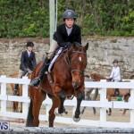 RES Horse Show Bermuda, January 21 2017-96