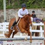 RES Horse Show Bermuda, January 21 2017-99