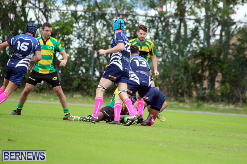 Rugby-Bermuda-Jan-21-2017-17