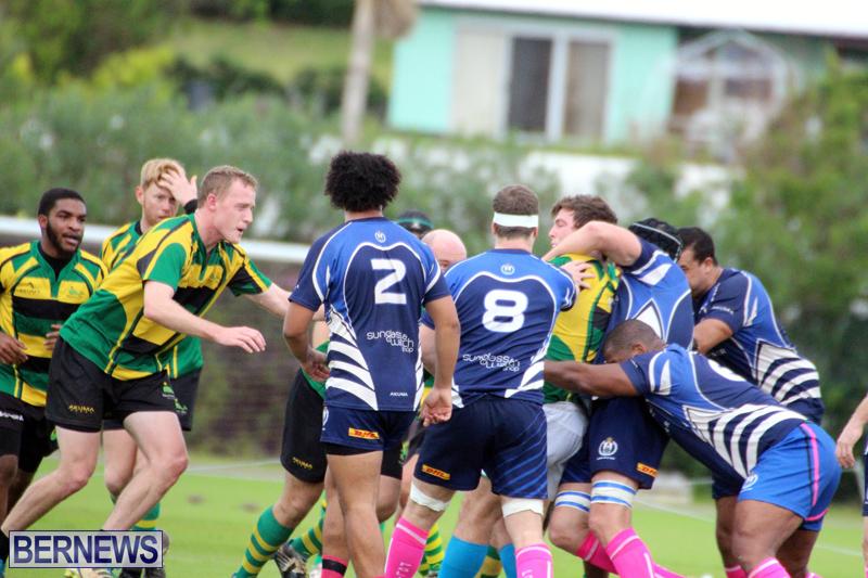 Rugby-Bermuda-Jan-21-2017-2