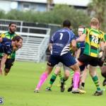 Rugby Bermuda Jan 21 2017 (4)
