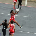 Youth Netball Bermuda Jan 21 2017 (1)