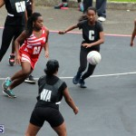 Youth Netball Bermuda Jan 21 2017 (10)