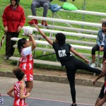 Youth Netball Bermuda Jan 21 2017 (16)
