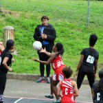 Youth Netball Bermuda Jan 21 2017 (18)