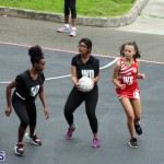 Youth Netball Bermuda Jan 21 2017 (2)