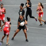 Youth Netball Bermuda Jan 21 2017 (3)