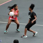 Youth Netball Bermuda Jan 21 2017 (7)