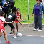Youth Netball Bermuda Jan 21 2017 (8)