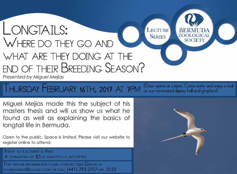 BZS Lecture Series Longtails Bermuda February 2017