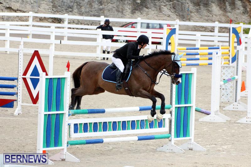FEI-Jumping-Challenge-Bermuda-Feb-4-2017-5