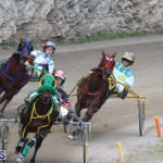 Harness Pony Final Bermuda Feb 18 2017 (11)