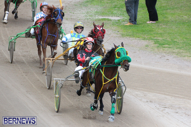 Harness-Pony-Final-Bermuda-Feb-18-2017-16
