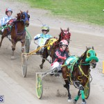 Harness Pony Final Bermuda Feb 18 2017 (17)