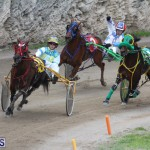 Harness Pony Final Bermuda Feb 18 2017 (18)