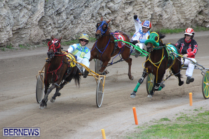 Harness-Pony-Final-Bermuda-Feb-18-2017-18