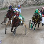 Harness Pony Final Bermuda Feb 18 2017 (19)