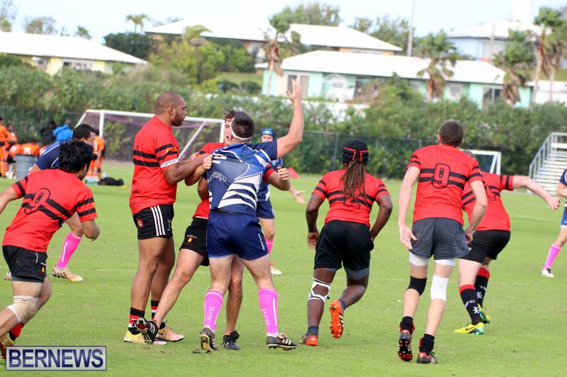 Rugby-Bermuda-January-28-2017-17