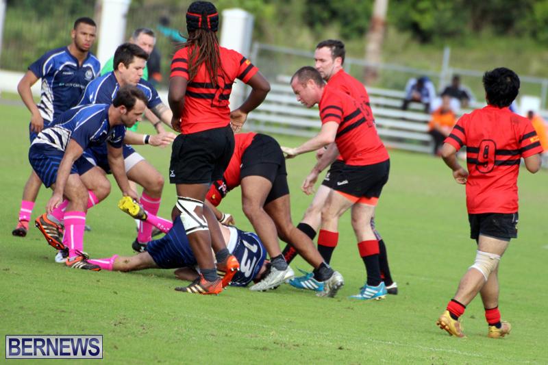 Rugby-Bermuda-January-28-2017-18