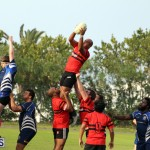 Rugby Bermuda January 28 2017 (3)