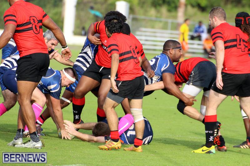 Rugby-Bermuda-January-28-2017-8