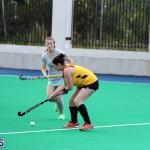 Women's Division Hockey Bermuda Jan 29 2017 (1)