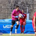 Bermuda Select vs New York Cosmos Football, March 19 2017-132