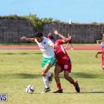 Bermuda Select vs New York Cosmos Football, March 19 2017-71