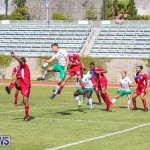 Bermuda Select vs New York Cosmos Football, March 19 2017-88
