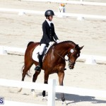 CEA Dressage Competition Bermuda Feb 26 2017 (11)