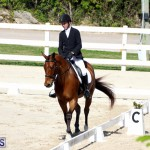 CEA Dressage Competition Bermuda Feb 26 2017 (15)