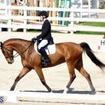 CEA Dressage Competition Bermuda Feb 26 2017 (16)