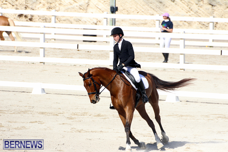 CEA-Dressage-Competition-Bermuda-Feb-26-2017-17